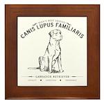 Vintage Labrador Framed Tile