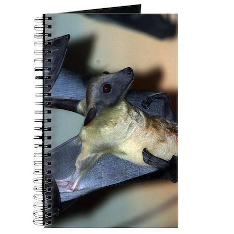 Straw-colored fruit bat 10.jpg Journal