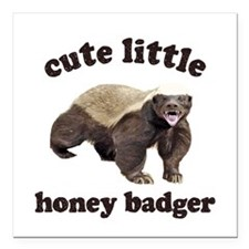 "Cute Lil Honey Badger Square Car Magnet 3"" x 3"""