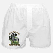 Bluetick Coonhound Gifts Boxer Shorts