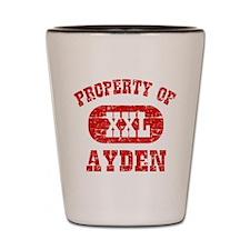 Property Of Ayden Shot Glass