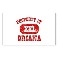 Property Of Briana Decal