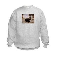 Hendrix Drama Llama Sweatshirt