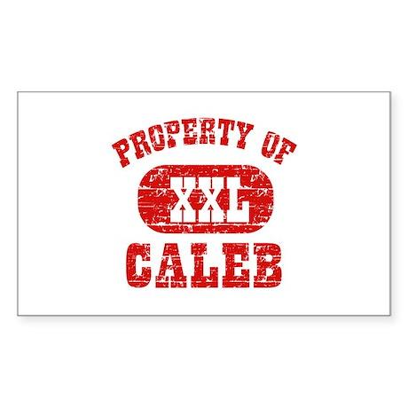 Property Of Caleb Sticker (Rectangle)