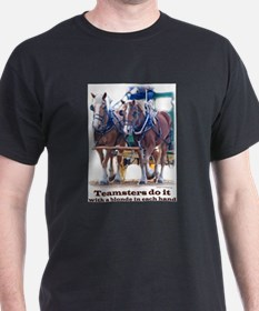 Funny Horse feathers T-Shirt