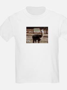 Clerks Drama Llama T-Shirt