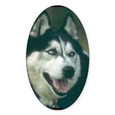 Siberian Husky Photo Oval Decal
