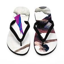 Dance! Flip Flops