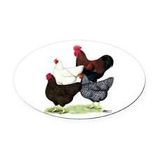 Plymouth Rock Chickens Oval Car Magnet