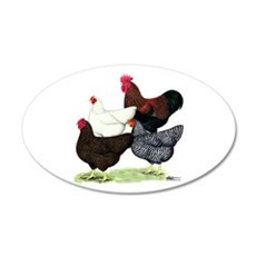Plymouth Rock Chickens Wall Decal