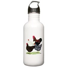 Plymouth Rock Chickens Water Bottle