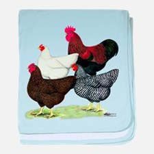 Plymouth Rock Chickens baby blanket