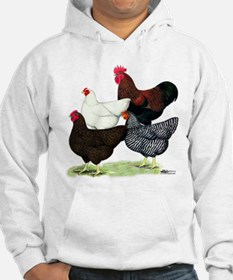 Plymouth Rock Chickens Jumper Hoody