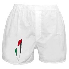 Palestine Flag and Map Boxer Shorts