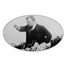 Teddy Roosevelt Picture Decal