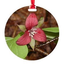PTXpress Red Trillium Ornament (Round)