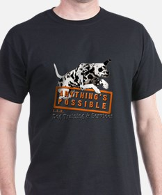 Anything's Possible LLC T-Shirt
