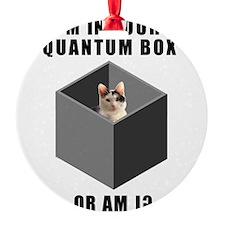 Quantum cat Ornament (Round)