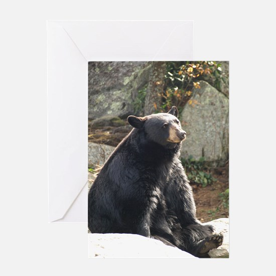Black Bear Sitting Greeting Card
