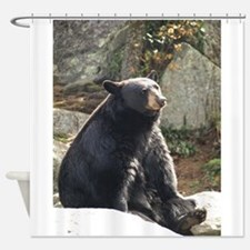 Black Bear Sitting Shower Curtain