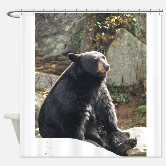 Black bear curtains