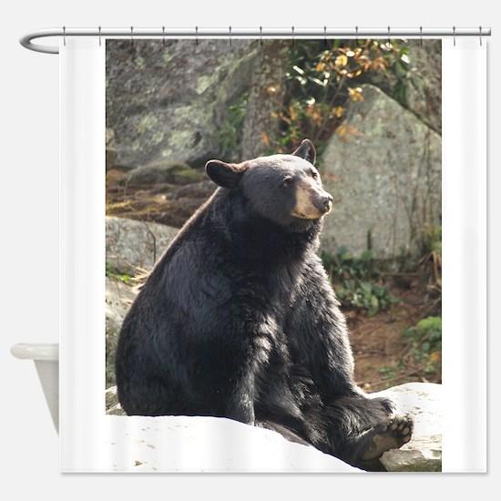 Black Bear Sitting Shower Curtain