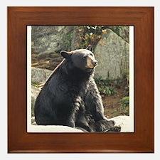 Black Bear Sitting Framed Tile