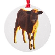 red angus Ornament (Round)