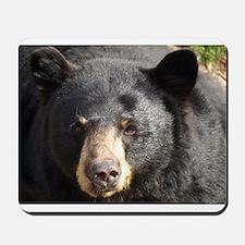 Black Bear Face Mousepad