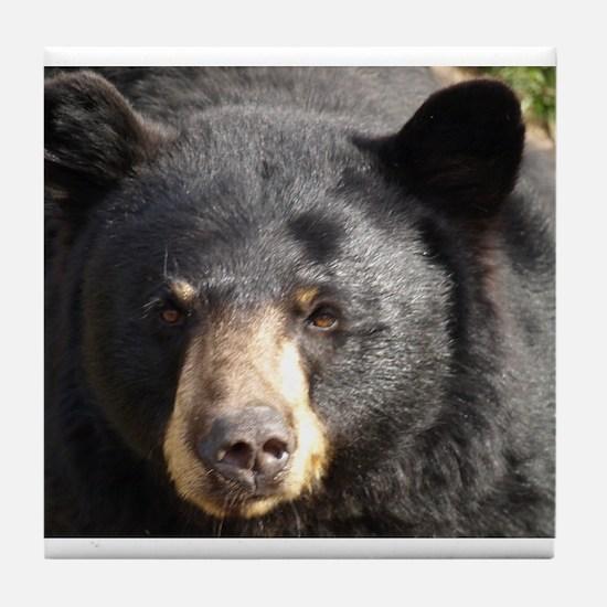 Black Bear Face Tile Coaster