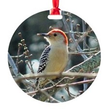 Red-bellied Woodpecker Ornament (Round)