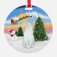 Take Off #1 & white cat (sh) Ornament (Round)