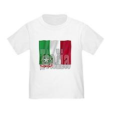 Silky Flag of Italia T