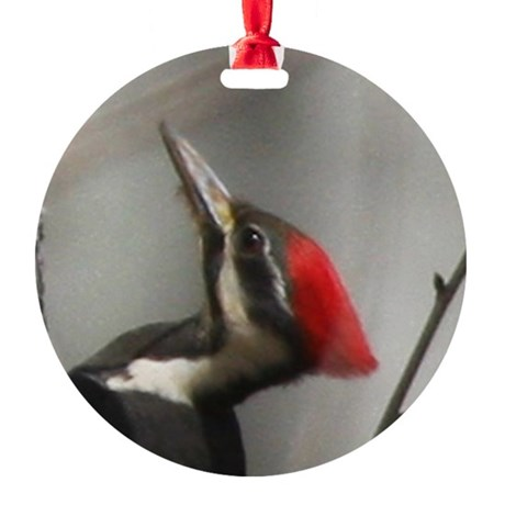 Pileated Woodpecker Ornament (Round)