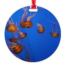 Jelly Fish Ornament (Round)