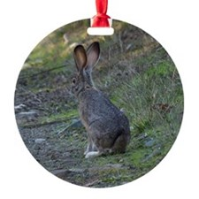 Black Tailed Jackrabbit Ornament (Round)