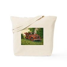 Lets Go Cinnamon Bear Tote Bag