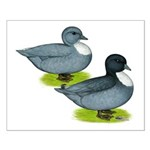 Blue Call Ducks Small Poster