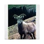 Mountain Sheep Queen Duvet