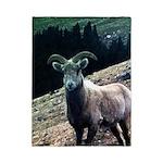 Mountain Sheep Twin Duvet