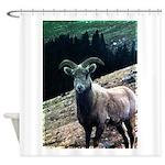 Mountain Sheep Shower Curtain