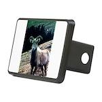 Mountain Sheep Rectangular Hitch Cover