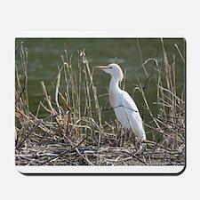 Cattle Egret Mousepad