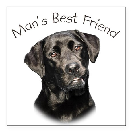 """Man's Best Friend Square Car Magnet 3"""" x 3"""""""