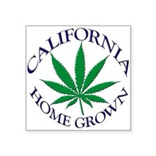 "californiahomegrownshirt.png Square Sticker 3"" x 3"