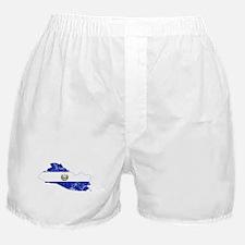 El Salvador Flag And Map Boxer Shorts
