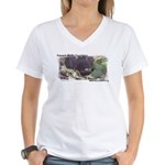 Linux, Delta2 2012 T-Shirt