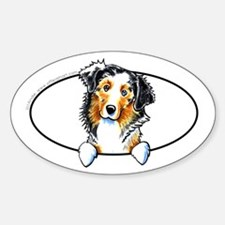 Australian Shepherd Peeking Bumper Decal