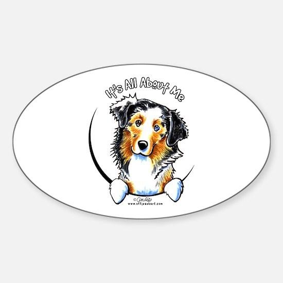 Australian Shepherd IAAM Sticker (Oval)