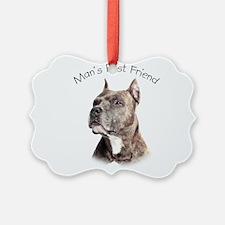 Man's Best Friend Ornament